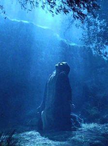 Nel Getsemani, Gesù non ci ha proposto un ideale, ma ci mostrato -- e dimostrato -- lobbedienza a Dio Padre senza se e senza ma.