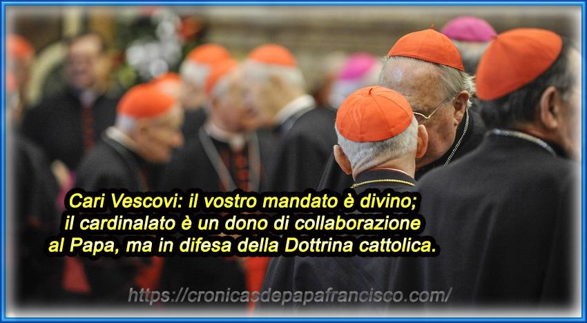 Cardinali e Vescovi: ricordate da cosa deriva il vostro ruolo…